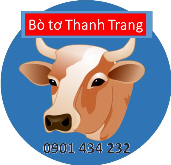 Bò tơ Thanh Trang - Địa điểm cung cấp thực phẩm tươi, ngon, chất lượng tại Tp. HCM